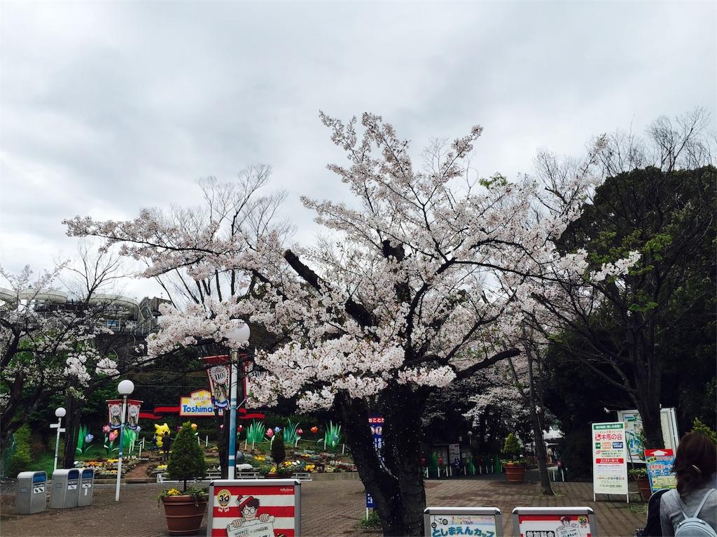 f:id:flying_syachiku:20170407220957j:image