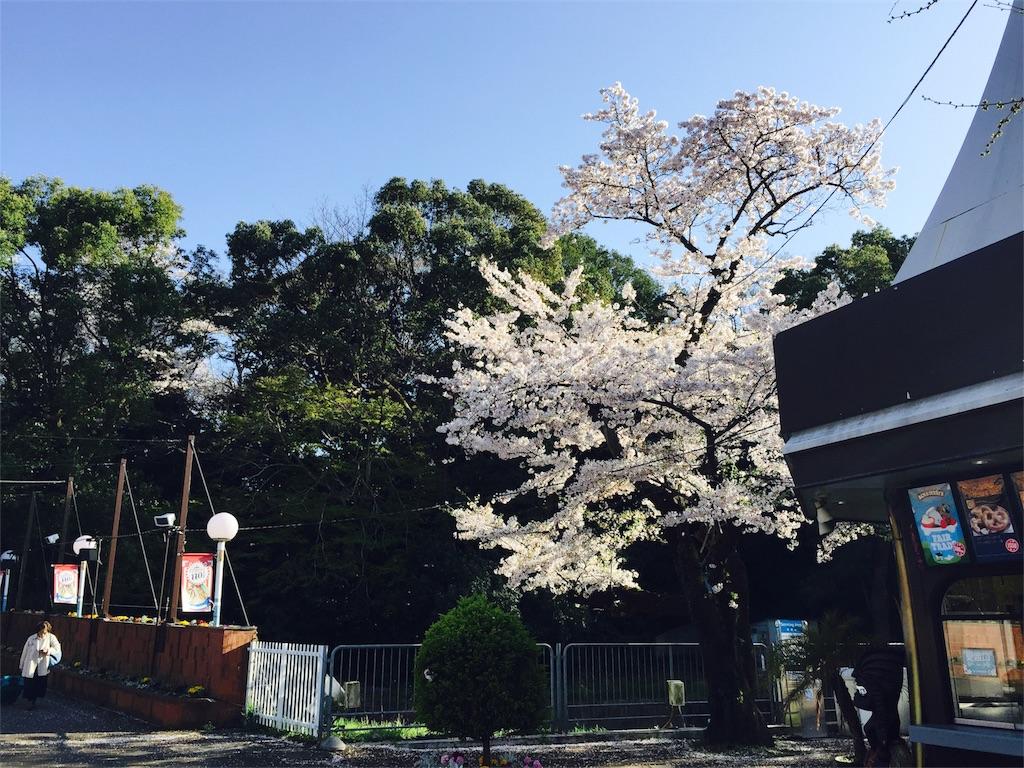 f:id:flying_syachiku:20170407221153j:image