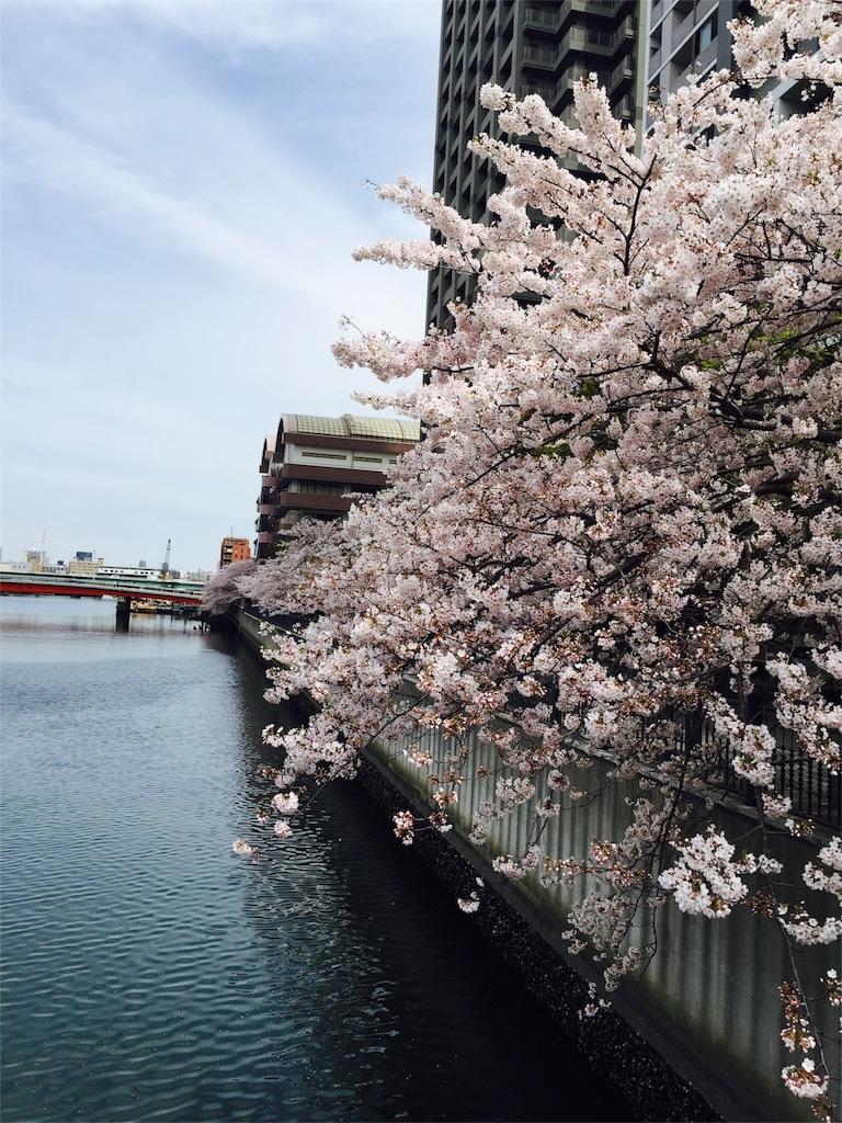 f:id:flying_syachiku:20170410230256j:image