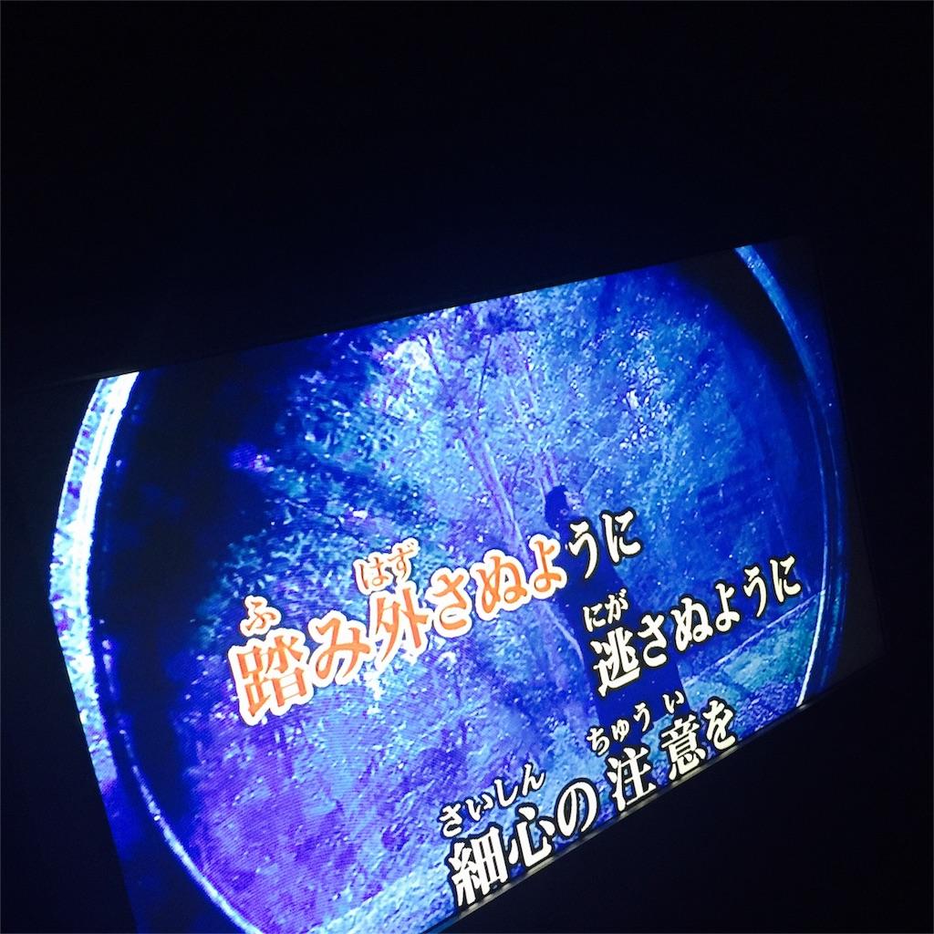 f:id:flying_syachiku:20170501134814j:image