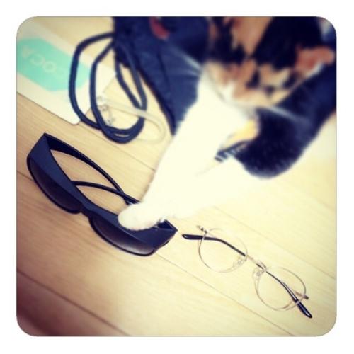 【オーバーサングラスとメガネ】