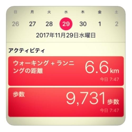 【距離6.6km/9731歩数】