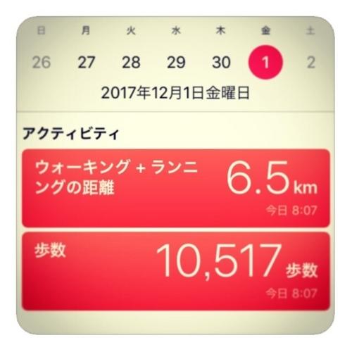 【6.5km/10517歩数】