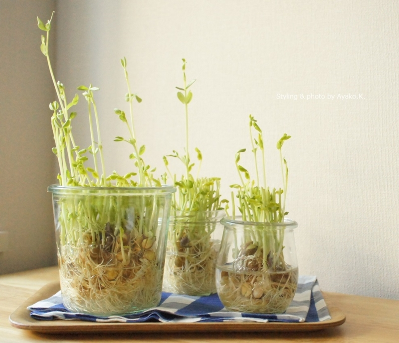 f:id:foodcreative:20150127102150j:plain