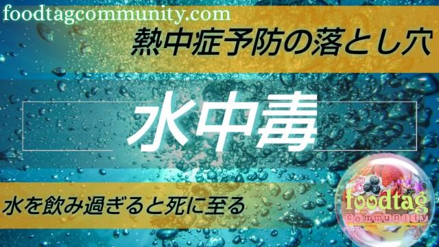 f:id:foodtag:20210531012829j:image
