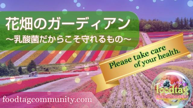 f:id:foodtag:20210731230315j:image