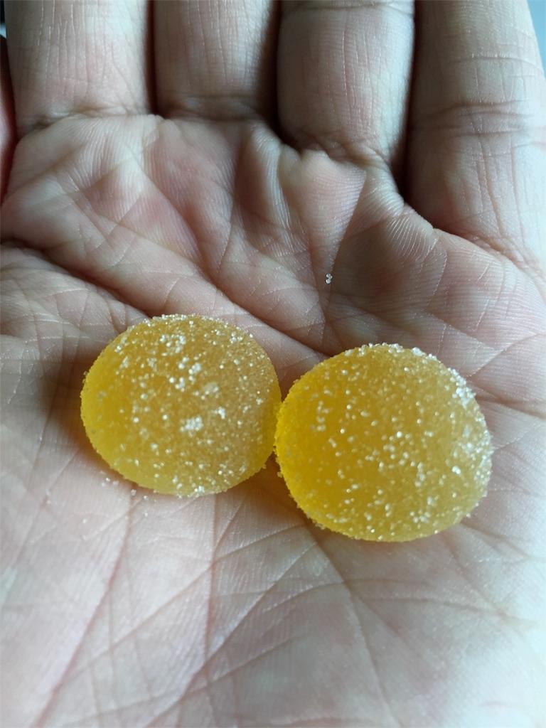 塩レモングミ