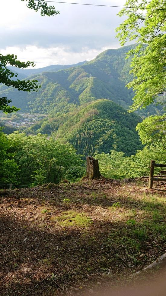 f:id:forest-adventure-ueno:20190608180230j:plain