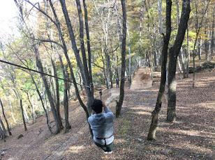 f:id:forest-adventure-ueno:20191117153013j:plain