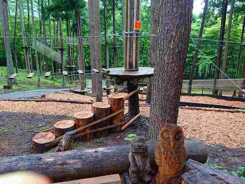 f:id:forest-adventure-ueno:20200718171914j:plain