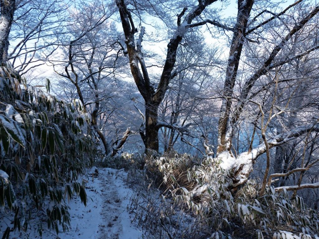 f:id:forestline:20190114142649p:plain