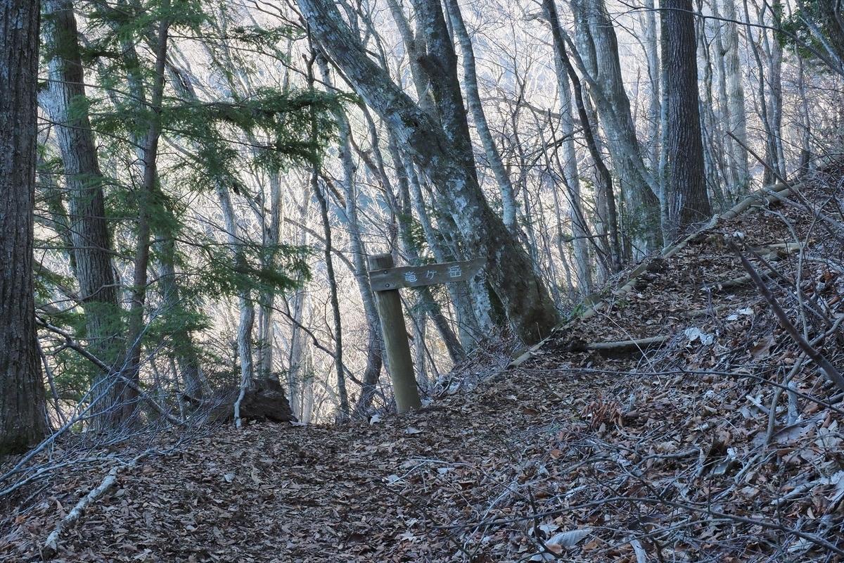 f:id:forestline:20200111133032j:plain