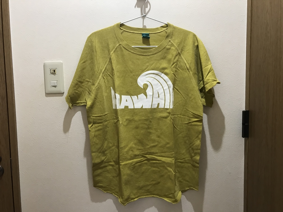 f:id:fortheshirt:20190510110544j:plain