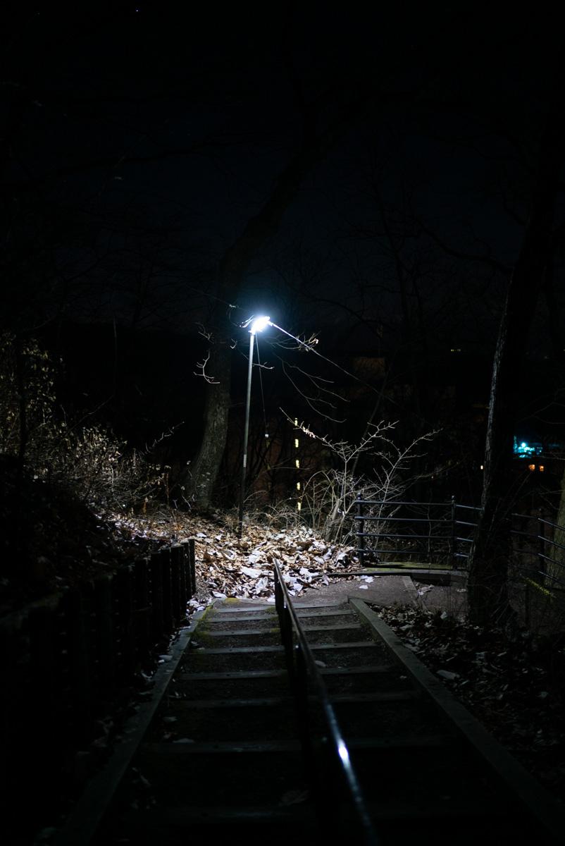 上之山展望台への道中