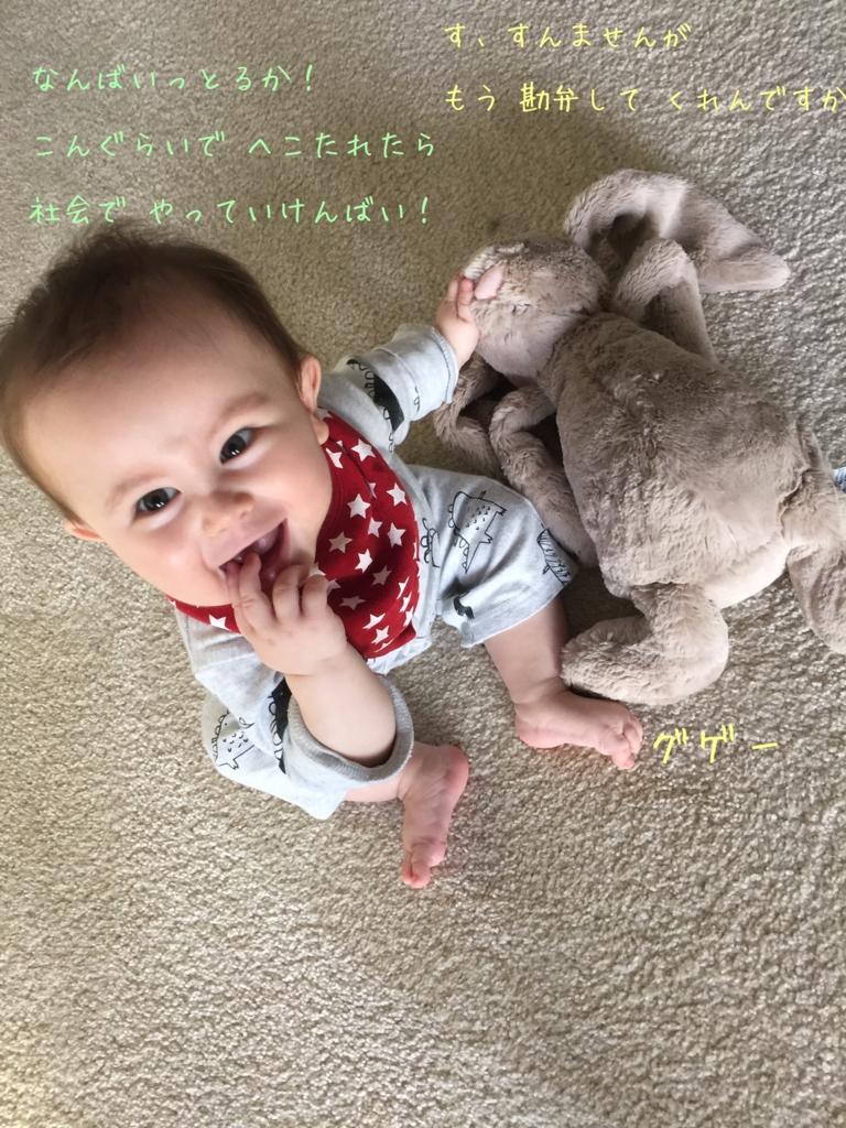 うさぎのぬいぐるみで遊ぶ赤ちゃん
