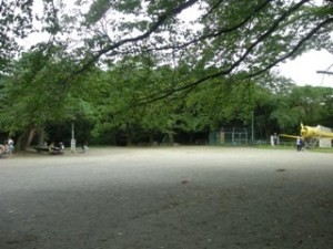 f:id:foujita:20101017150045j:image