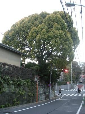 f:id:foujita:20170723214901j:image