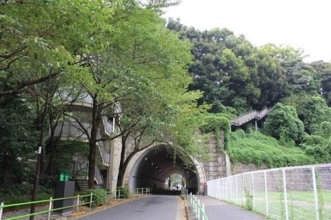 f:id:foujita:20200920114603j:image