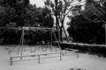 [SONY][NEX-5][19mm]公園:2012年冬