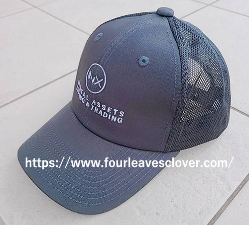 f:id:fourleavedclover:20210824195248j:plain