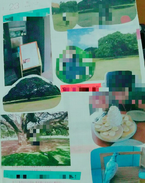 f:id:fourruredouce:20170113233646j:plain