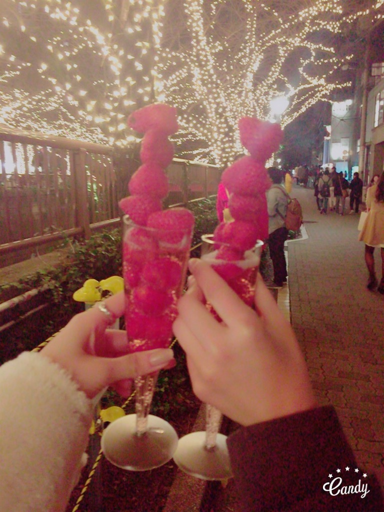 f:id:fraisesss:20161225134413j:image