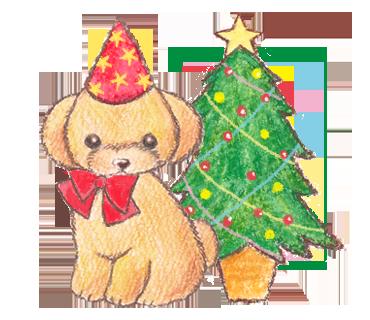 クリスマス プードル