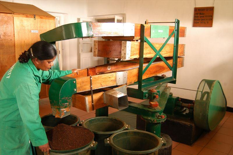 cHeritance-Tea-Factory-7_R