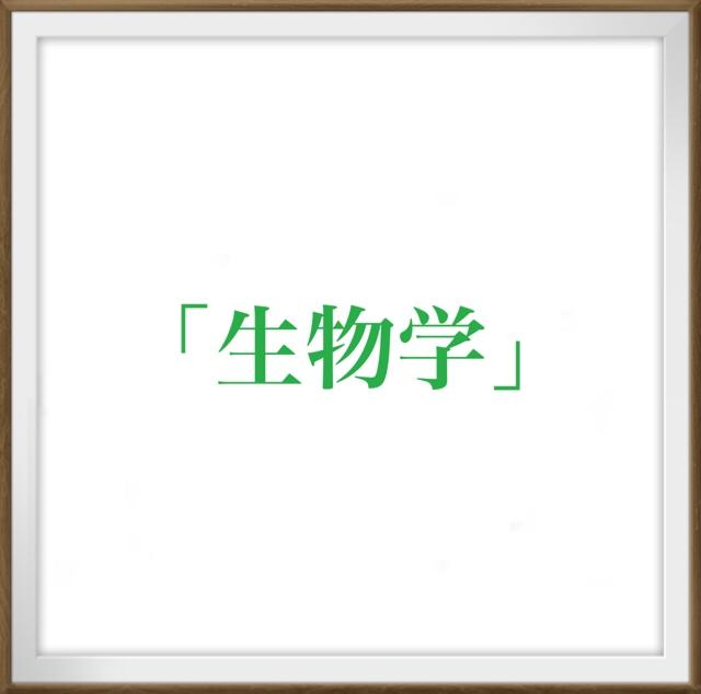 f:id:fravoman:20201126231821j:plain