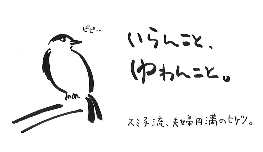 f:id:freelifetakaharu:20190128144215j:plain