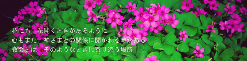 f:id:friendkousei:20101122125012j:image:w640