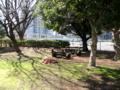 [石碑][鉄道]青島史蹟保存会「軽便鉄道駿遠線蹟」前から新藤枝駅方向