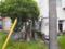 中新田北島の西國川中島八兵衛
