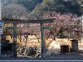 [神仏][神社]石部神社一の鳥居