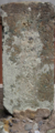 [神仏][川中島八兵衛]前島・弘法堂の川中嶋小長谷八兵エ衛