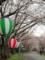 島田大堤の桜並木