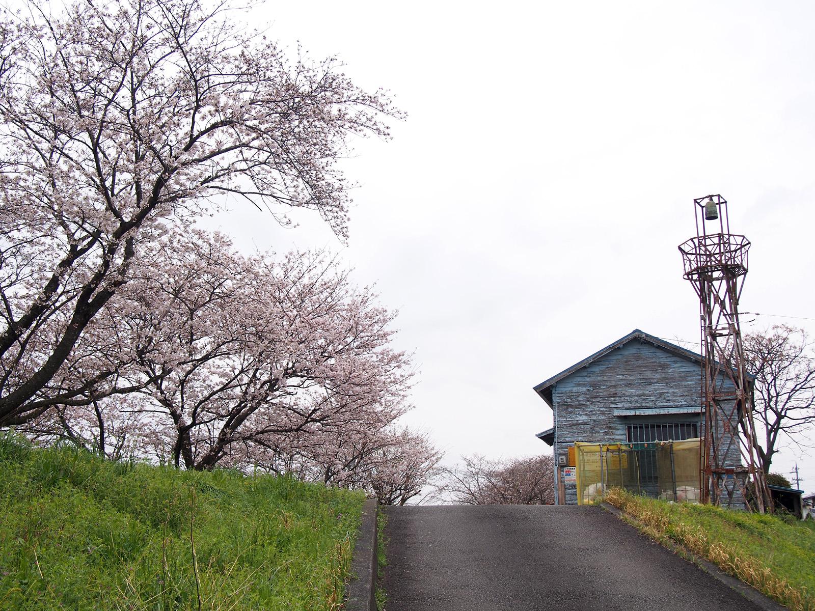 八楠水防倉庫と火の見櫓2017/04/10