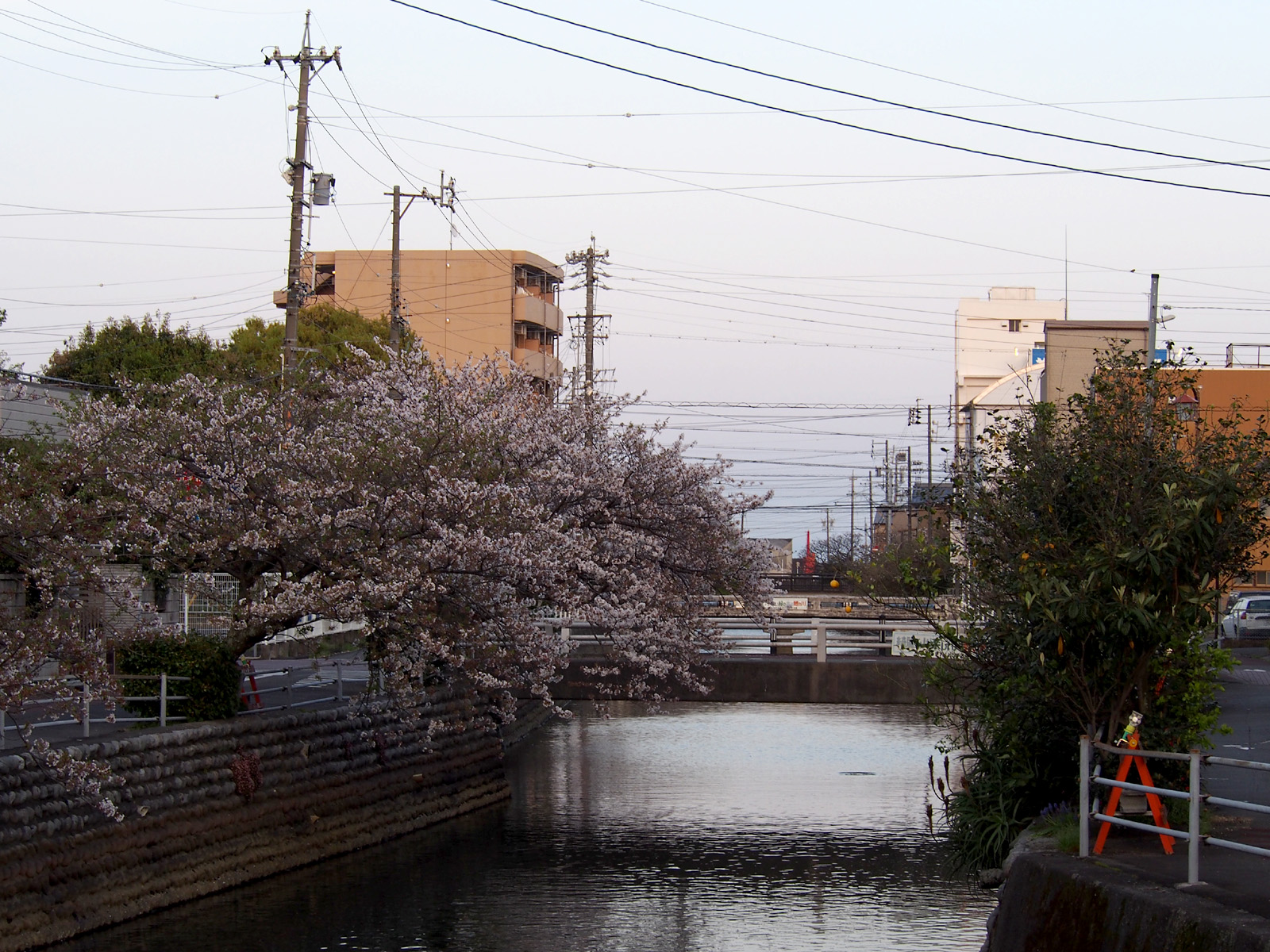 小石川めがね橋から
