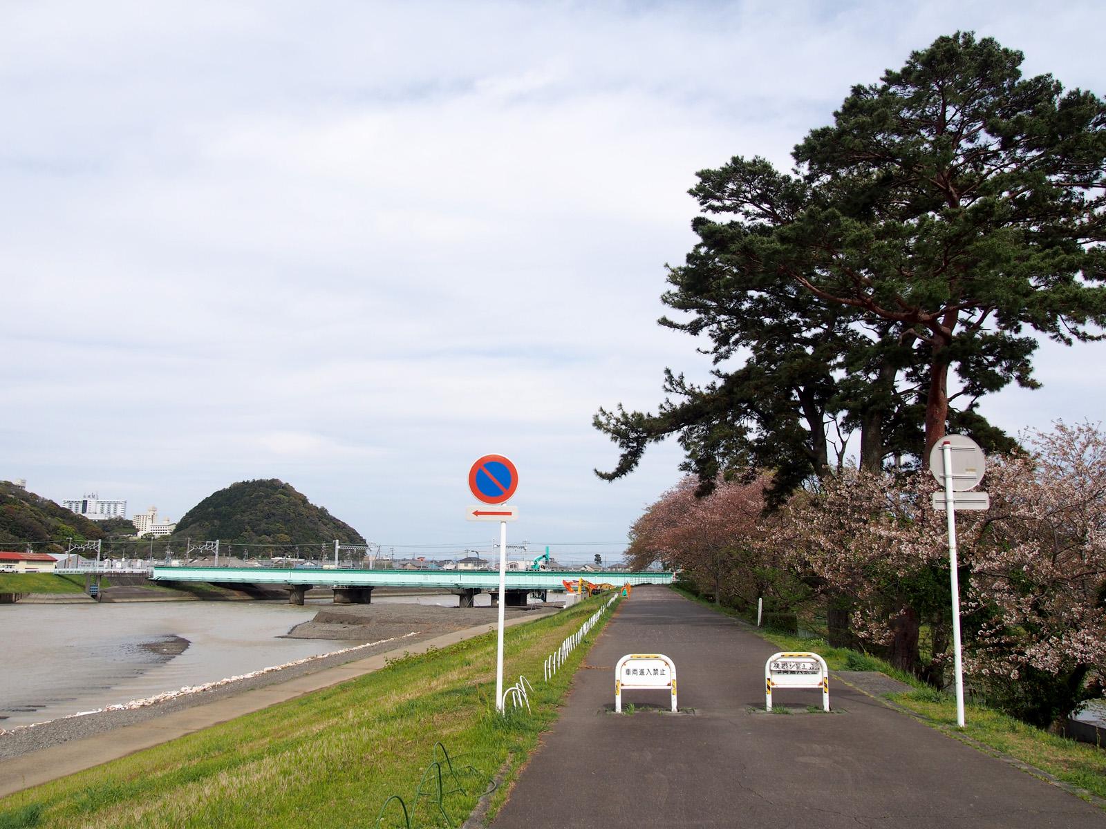 瀬戸川の御所松