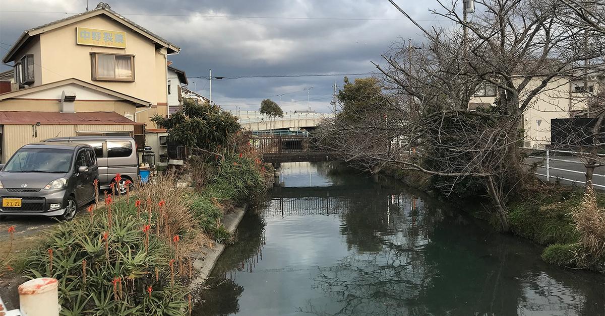中野製菓の裏の小石川