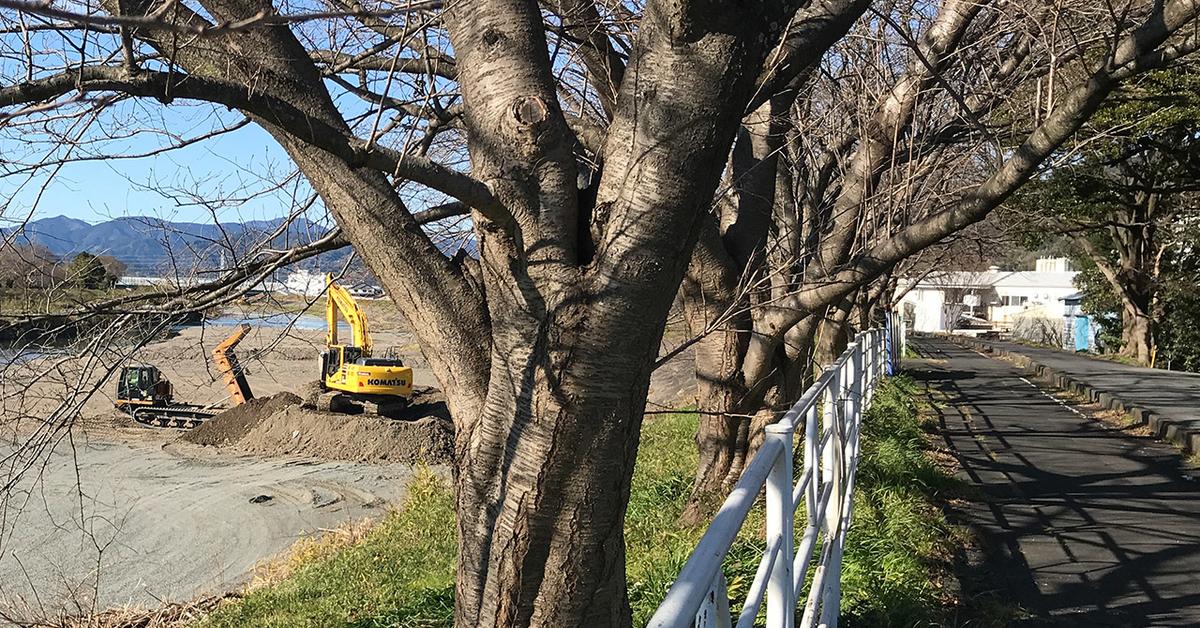 川底を掘削中の重機