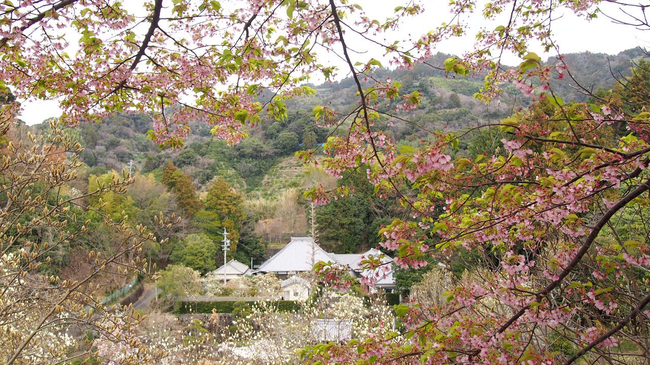 鎮守山山頂から見る十輪寺
