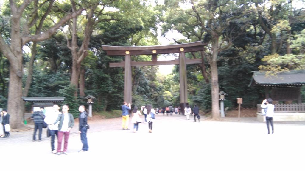 f:id:fromkishibe:20160414012641j:plain