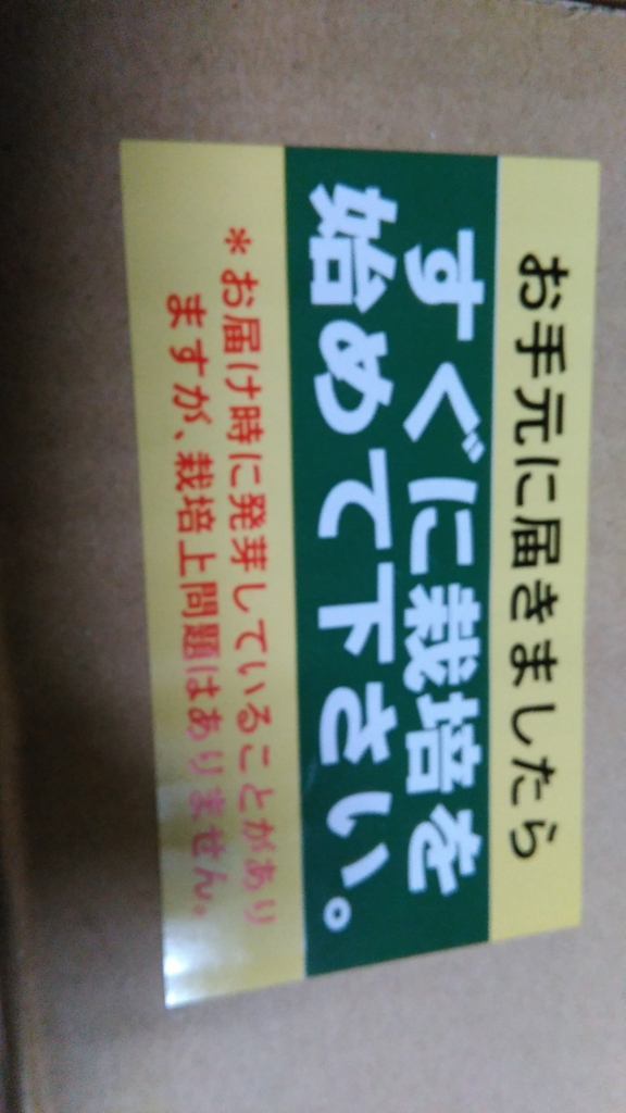 f:id:fromkishibe:20160512004643j:plain