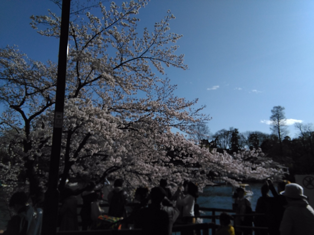 f:id:fromkishibe:20170409204650j:plain