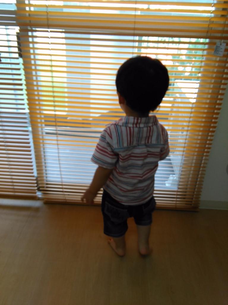 f:id:fromkishibe:20170805174233j:plain