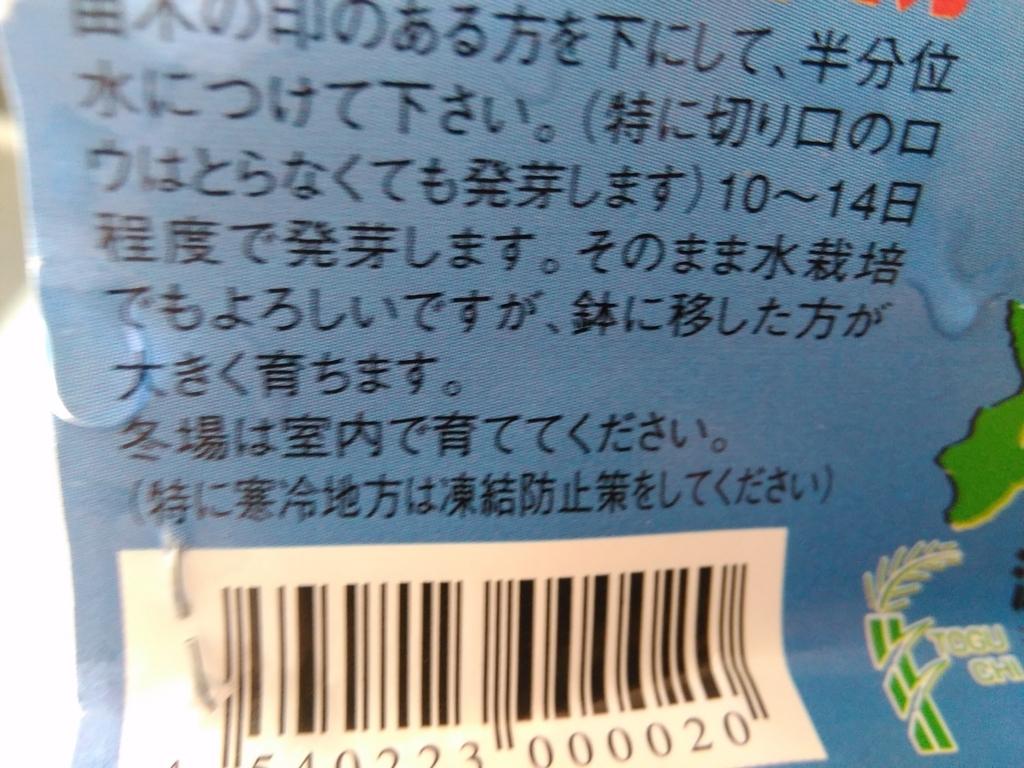 f:id:fromkishibe:20180614152709j:plain