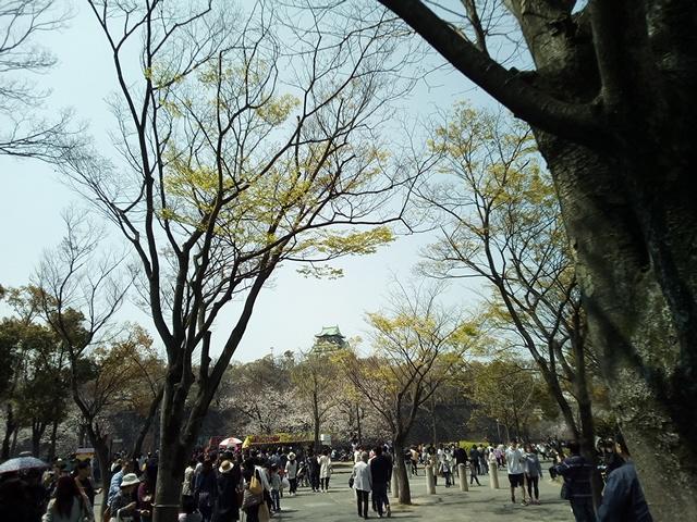 f:id:fromkishibe:20190410161954j:plain