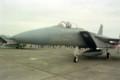 [飛行機][戦闘機]WINGS97 厚木飛行場 / F-15C?