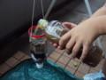 [自由研究]ペットボトル濾過/泥水を注ぐ